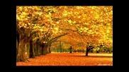 Най-красивото време - есента.