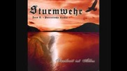 Sturmwehr & Jens B. - Wir sind anders