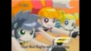 Powerpuff Girls Z & Rowdyruff Boys