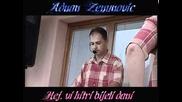 Adnan Zenunovic - Hej, vi hitri bijeli dani