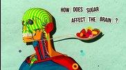 Как захарта влиае на мозъка