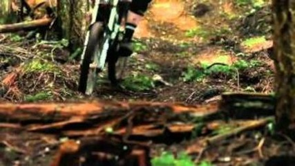 downhill freeride mtb