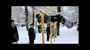Snow Business - Parkour & Freerunning