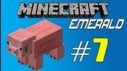 Minecraft Emerald - Episode 7 - Farming time