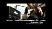 Tapp Amps Chameleon - Metal