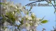 Komаromi Pisti: Tavaszi szеl vizet аraszt..