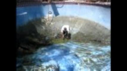 Пич пада в много мръсен басейн (смях)