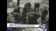 За българите, преживели ужаса на лагерите на смъртта