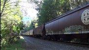 Американски товарен влак минава през гората - Bnsf 7789 6844 6538
