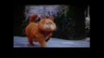 Garfield qko smqh