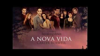 Carter Burwell - A Nova Vida ( Twilight Breaking Dawn Part 1)