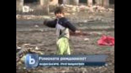 На всяко българче се раждат три циганчета.