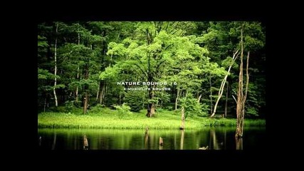 Nature Sound 16 - The Most Relaxing Sounds