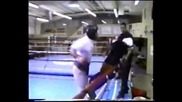 Mike Tyson (тренировки)