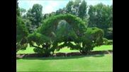 Pearl Fryar's Topiary