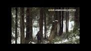 Затерянные в лесах (бг суб)
