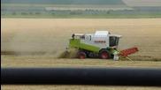 Жътва Harvestbulgaria 2013 [claas Lexion 440 Claas Scorpion Landini Ghibli T-150 Ifa L60 2x Belarus]