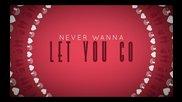 Never Wanna Let You Go - Megan Nicole