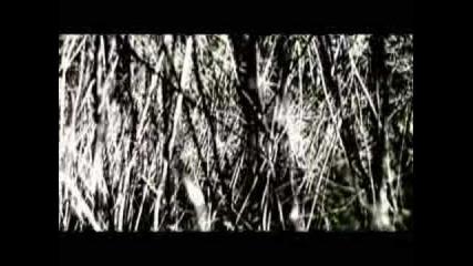 bomb the bass - black river (gui borato remix)