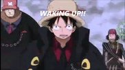 One piece - awake and alive