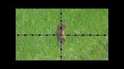 Въздушна пушка Edgun Matador .22 cal