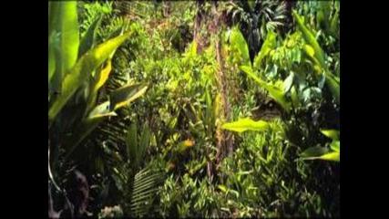 Jurassic Park 4-(jurassic.attack)