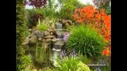 Сад гармонии релакс