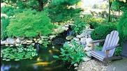 Beautiful Backyard Ponds and Waterfalls