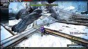 Sword Fiona vs Beokros Vindictus