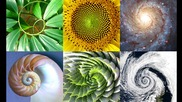 #129. Цветето на Живота - Геометрията на Живота!