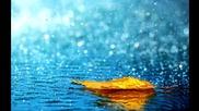 * Релакс * Най-успокояващите звуци от природата * Дъжд *