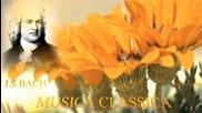 Bach Siciliano Bwv1031 for piano and Orchestra ,hd