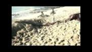 Macaco - Puerto Presente ft. Fito Cabrales