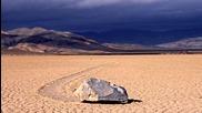 Обманутые наукой - Живые камни 2013