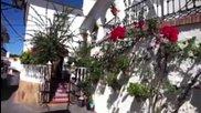 Sevillanas- Cела в Малага