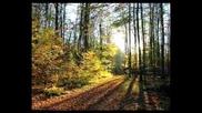 ( Специално за Тrifon56 ) Johann Strauss ll. - Geschithen aus dem Wiener Wald