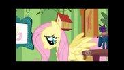 Pmv: Fluttershy - Quiet