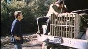 Стената (1984)