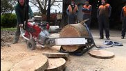 Australian V8 Chainsaw made by Whitlands Engineering www.superaxe.