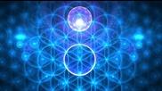 Духовна наука 6 ~ Цветето на Живота