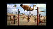 street fitnes israel 2011