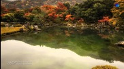 Fabrice Tonnellier - Nature Radieuse(relaxing music)