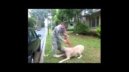 Любовта между животните и хората!