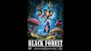 Черный лес 2012