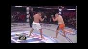 Благой Иванов vs. Manny Lara (bellator 99)