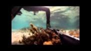 В Гърция под водата с харпун и го про
