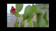 Nikon D5100 - Видео с ръчен фокус - Amazing