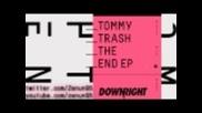 Tommy Trash-the End ( Future folk)