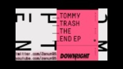 Tommy Trash-the End ( Future folk)