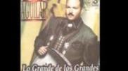 Pepe Aguilar - Tu Solo Tu